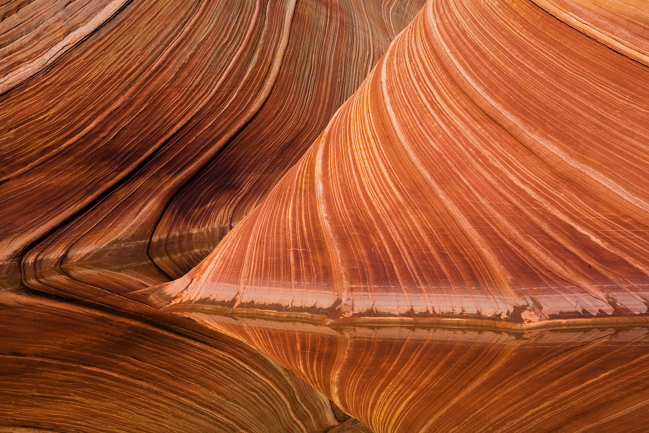 The Wave in Vermillion Cliff